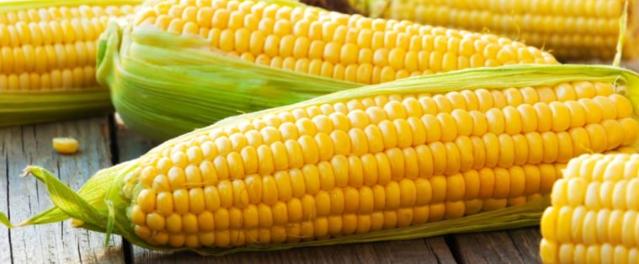 Corn onthe Cob